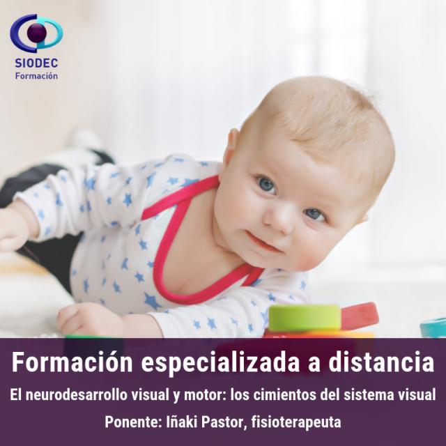Curso Online: El neurodesarrollo visual y motor: los cimientos del sistema visual