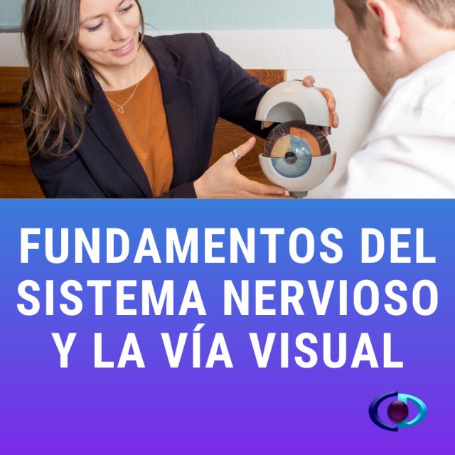 Curso Fundamentos del Sistema Nervioso y la Vía Visual.