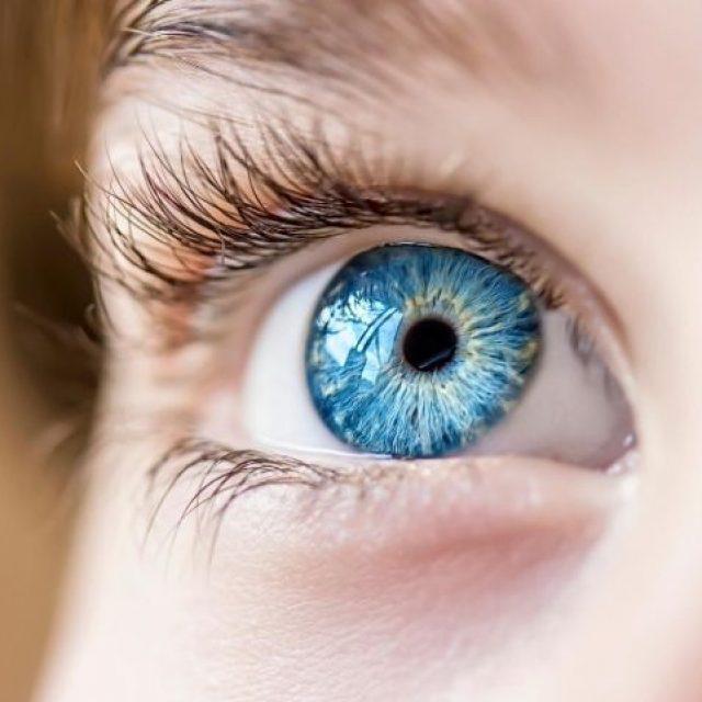Un estudio de la Universidad de California revela que cada persona tiene una huella visual única