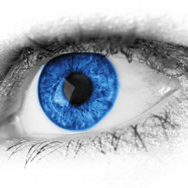 ¿Por qué la percepción visual es un proceso de decisión?