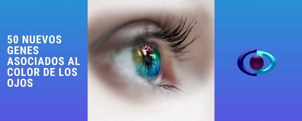 50 nuevos genes asociados al color de ojos