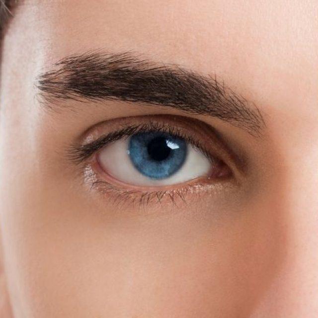 Células de Schwann únicas: los ojos las tienen