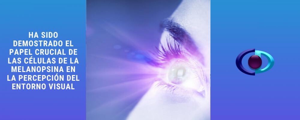 Ha sido demostrado el papel crucial de las células de melanopsina en la percepción del entorno visual