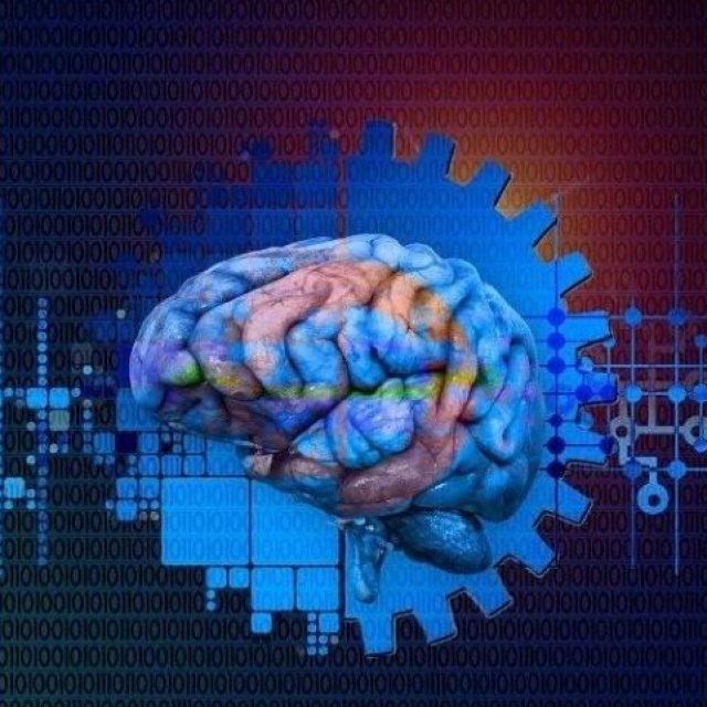 """Las neuronas de la corteza visual del cerebro se """"desvían"""" con el tiempo"""