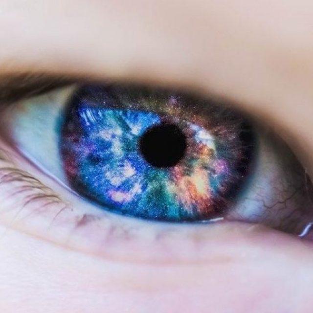 ¿Cómo priorizamos lo que vemos?