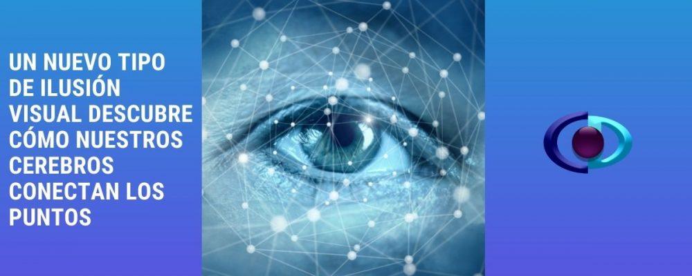 Un nuevo tipo de ilusión visual descubre cómo nuestros cerebros conectan los puntos