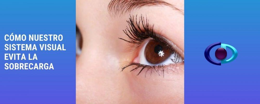 Cómo nuestro sistema visual evita la sobrecarga